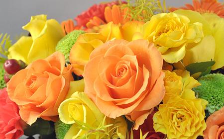 父の日の色は黄色 黄色いバラなど父の日に人気な黄色い花4つ