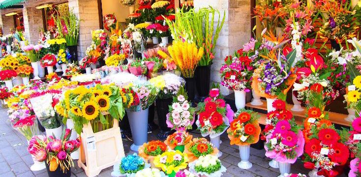 「花や」の画像検索結果