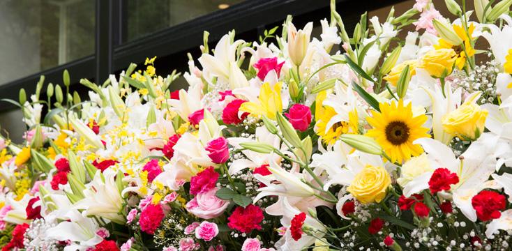 祝い 花 開店 【贈ってはずれなし!】花以外に喜ばれる開店祝いギフト 《5選》相場やマナーもご紹介