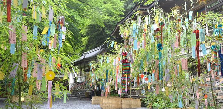 七夕の笹飾りが並ぶ寺院