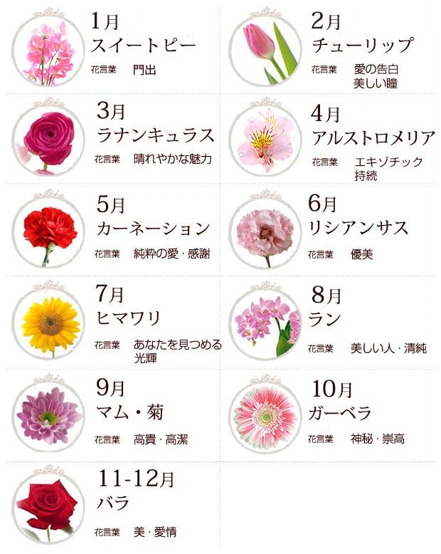 旬の花   日比谷花壇