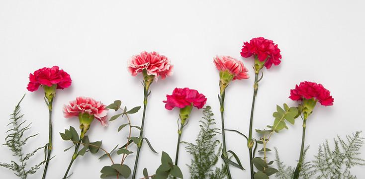 花瓶がなくても母の日の花をおしゃれに飾れる花瓶の代用品4つ2019年母