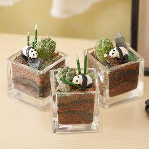 ちいさな植物と一緒に楽しむジオラマ「竹林のパンダたち」ミニサイズ3個セットの商品画像
