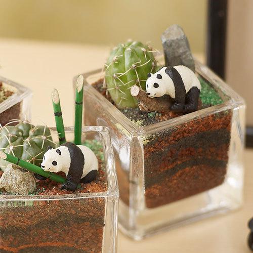 ちいさな植物と一緒に楽しむジオラマ「竹林のパンダたち」ミニサイズ3個セット