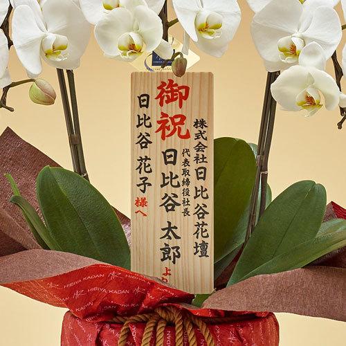 ゴールド「胡蝶蘭(ホワイト)2本立ち」