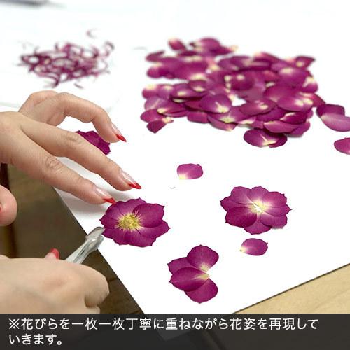 デザイナーズ押し花フレームアート 「ボウメモワール」