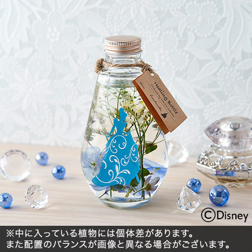 ディズニー Healing Bottle 〜Disney collection〜 「シンデレラ」