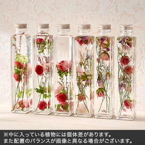 Healing Bottle「Thanks with Flowers」(2本セット)【沖縄届不可】
