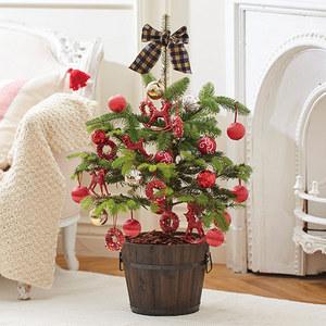 クリスマス モミの木ツリー「フェリスタス」の商品画像