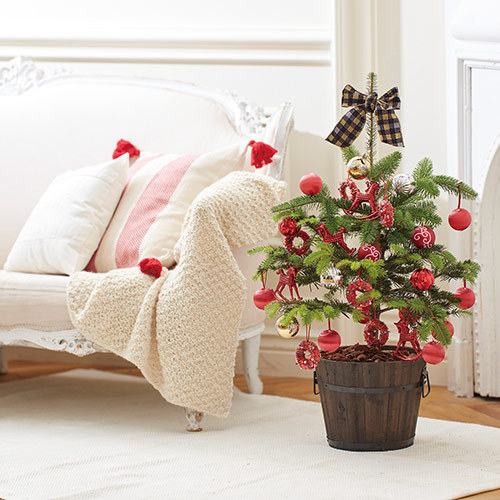 クリスマス モミの木ツリー「フェリスタス」