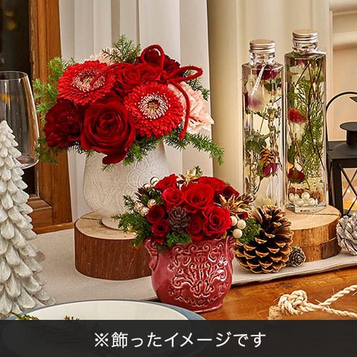 クリスマス アレンジメント「ベッラグラナート」