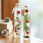 クリスマス Healing Bottle「Noel&Elf」2本セット【沖縄届不可】