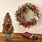 クリスマス ドライリースとツリーのセット「ノエル ド ルージュ」