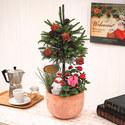 季節の寄せ植え「スノーマンツリー」