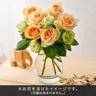 おうちで楽しむ季節の花「ハニーフレッシュミックス」オレンジ系