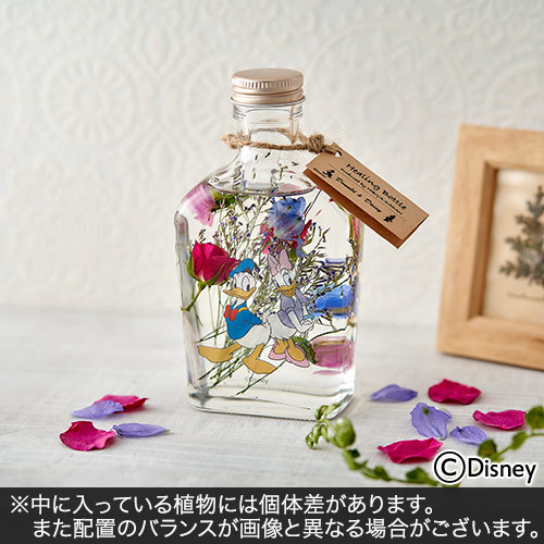 ディズニー Healing Bottle〜Disney collection〜「ドナルド&デイジー」【沖縄届不可】