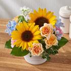 アレンジメント「7月の旬の花 マルゴー」