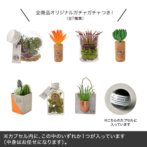 URBAN GREEN MAKERS テラリウムキット「ビーカー」