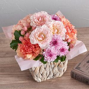アレンジメント「9月の旬の花 マルゴー」の商品画像