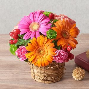 アレンジメント「10月の旬の花 マルゴー」の商品画像