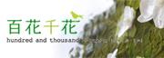 石井千花のブログ