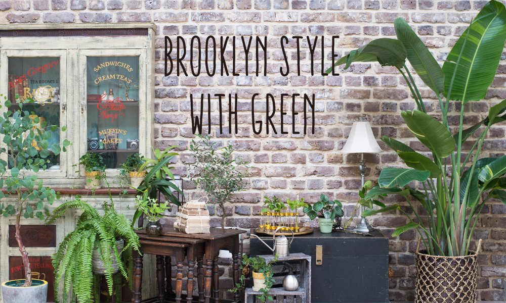 BROOKLYN STYLE WITH GREEN